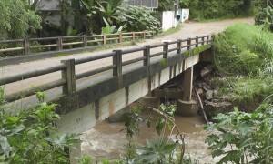 ponte_holliday260116